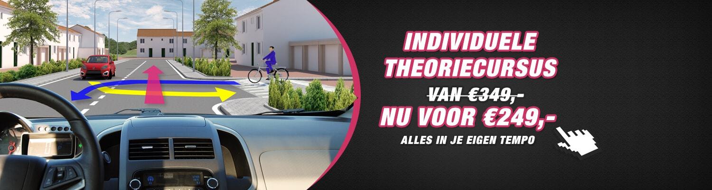Individuele theoriecursus